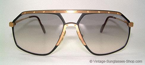 alpina sunglasses