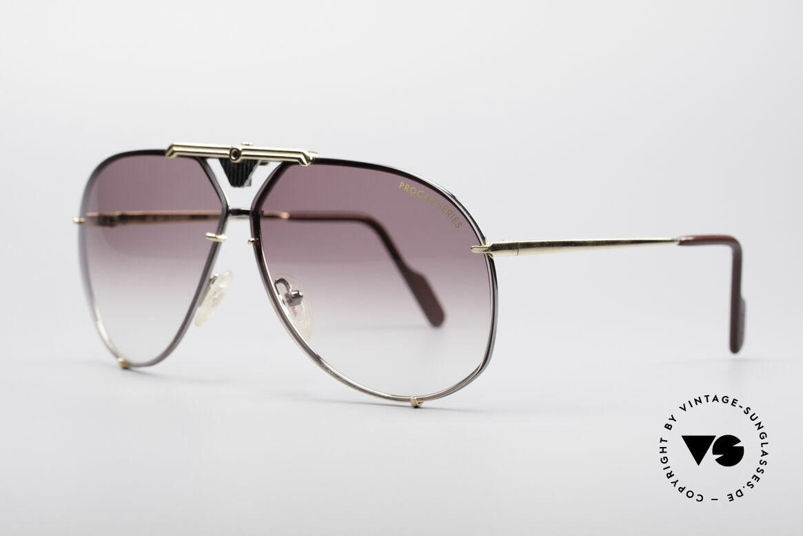 Alpina PC201 ProCar Series Sunglasses