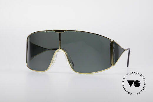 Alpina Stratos Polarized Vintage Shades Details