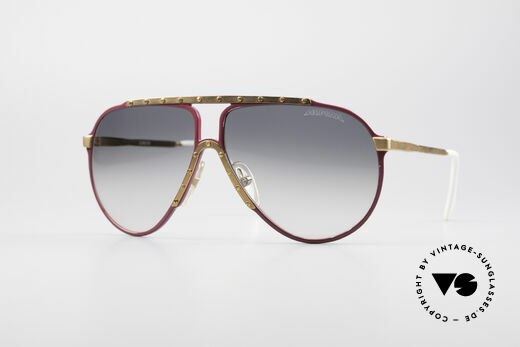 Alpina M1 Iconic Vintage Sunglasses Details