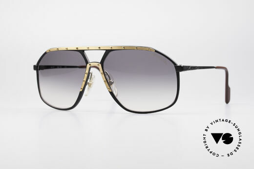 Alpina M1/7 Iconic Vintage Sunglasses Details