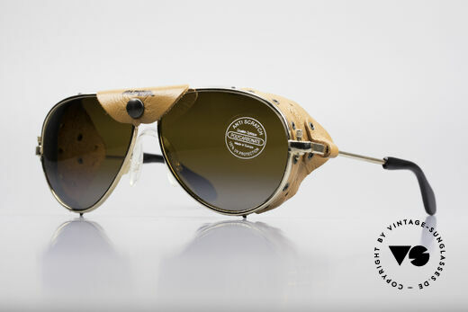 cd935135c432 Alpina 3489 Arctis Sports Glacier Sunglasses Details