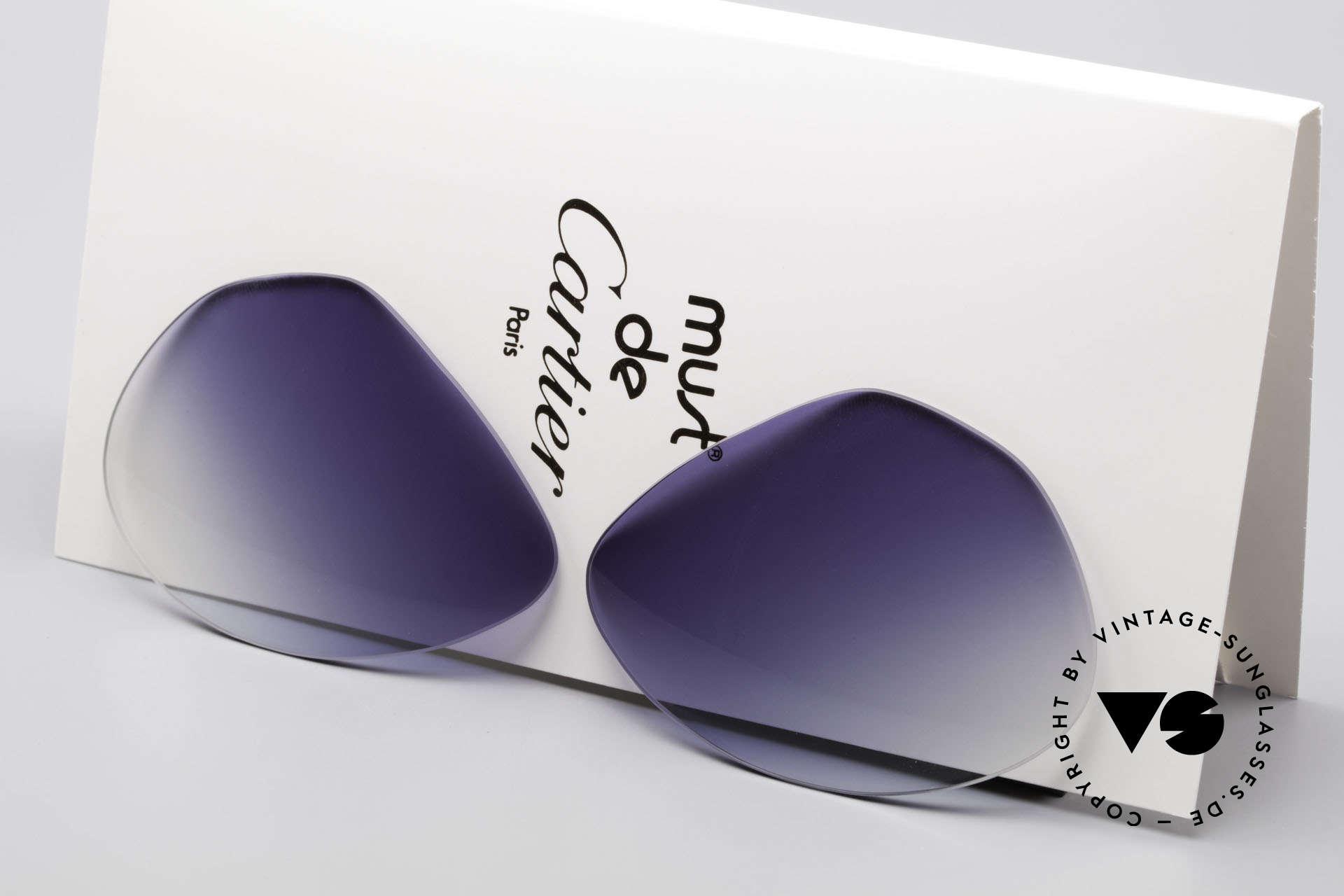 Cartier Vendome Lenses - L Blue Gradient Sun Lenses, new CR39 UV400 plastic lenses (for 100% UV protection), Made for Men