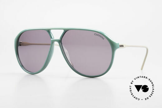 Carrera 5425 80's 90's Sports Lifestyle Shades Details