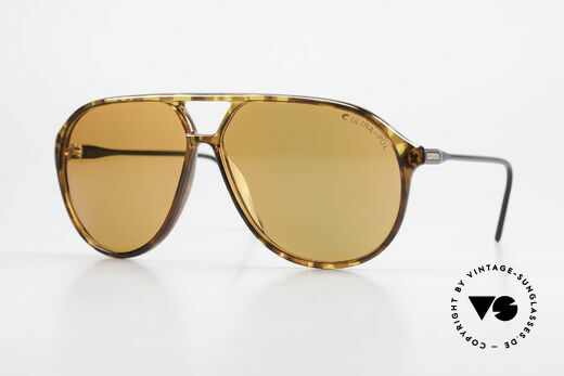 Carrera 5425 Polarized Sunglasses Aviator Details