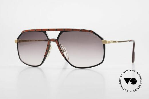 Alpina M6 Rare 80's Vintage Sunglasses Details