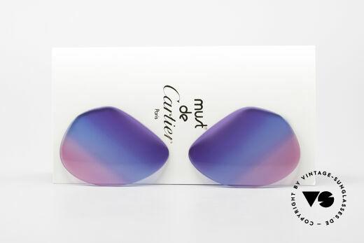 Cartier Vendome Lenses - L Tricolored Sun Lenses Galaxy Details